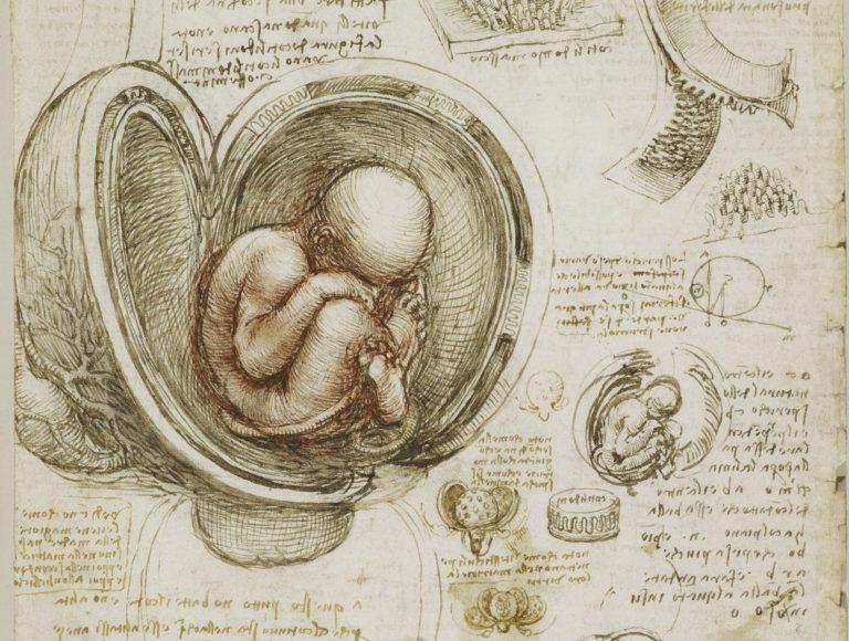 leonardo da vinci the greatest experimental scientist of the renaissance Leonardo da vinci: the greatest experimental scientist of the renaissance pages 2 leonardo da vinci, vinci, italian renaissance, experimental scientist of.