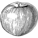 514px-Apple_(PSF)