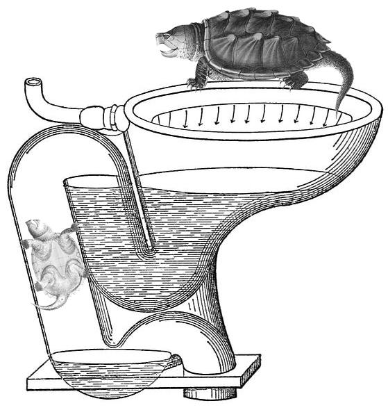 tartacesso